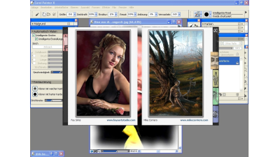 Grafikprogramm: Corel Painter X im Test