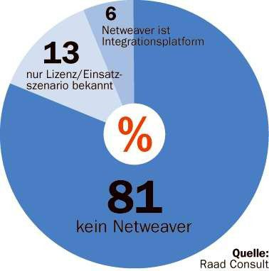 Erst sechs Prozent der SAP-Kunden nutzen Netweaver produktiv.
